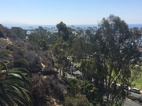 Дана-Пойнт, Калифорния: photo9.jpg