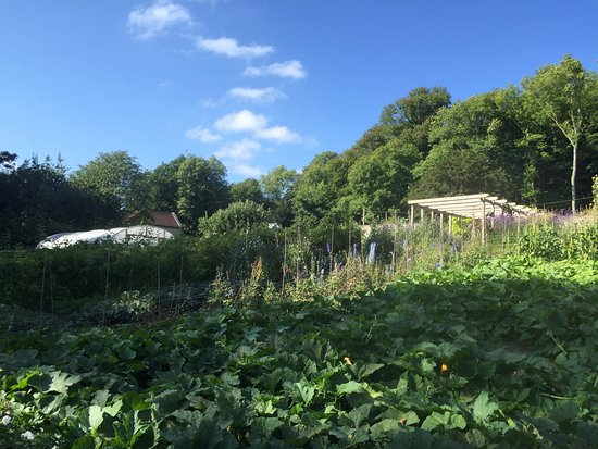 Tisbury, UK: Pythouse Kitchen Garden