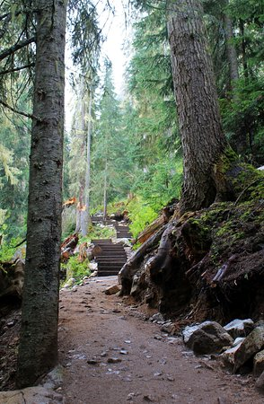 Pemberton, Canadá: The climb up the hill from the 1st to 2nd lake