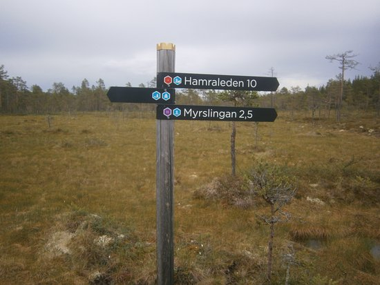Ljusdal, Suécia: Stigvisningsskyltar...