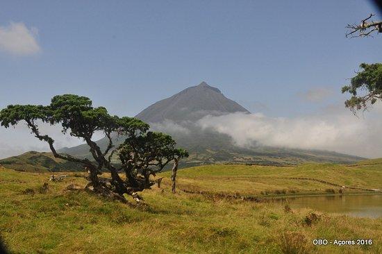 Sao Roque do Pico