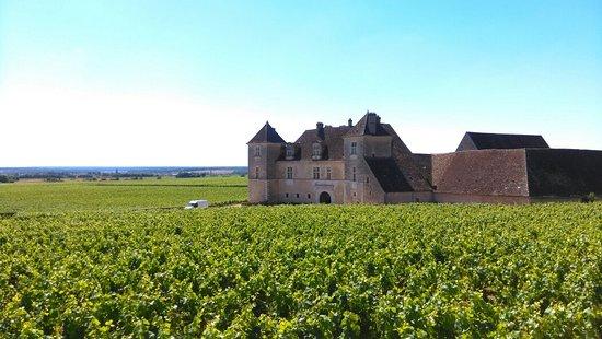 Vougeot, France: IMAG2552_large.jpg