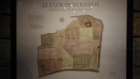 Vougeot, France: IMAG2577_large.jpg