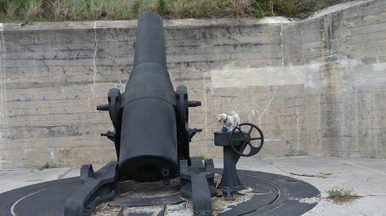 写真Fort De Soto Park枚