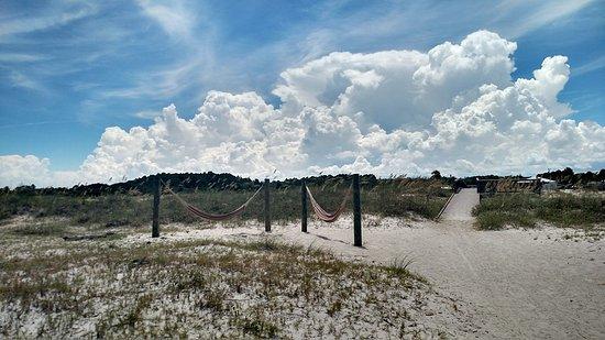 Fort Clinch State Park: Hammocks