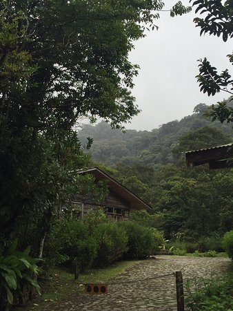 Bajos del Toro, Kosta Rika: photo2.jpg