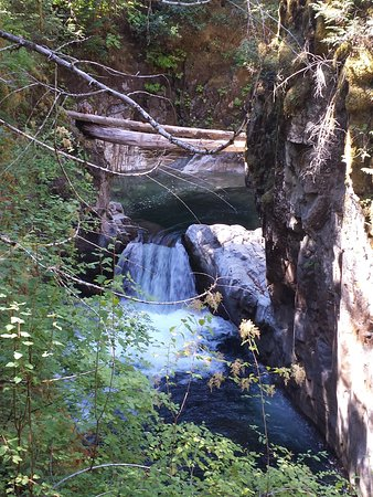 Little Qualicum Falls Provincial Park: Little Qualicum Falls Park