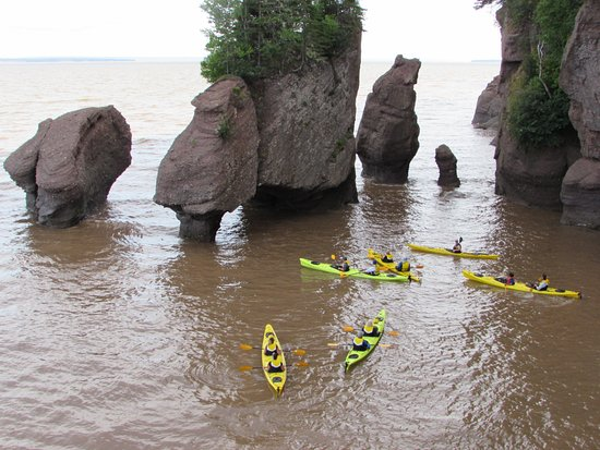 Hopewell Rocks High Tide And Kayakers