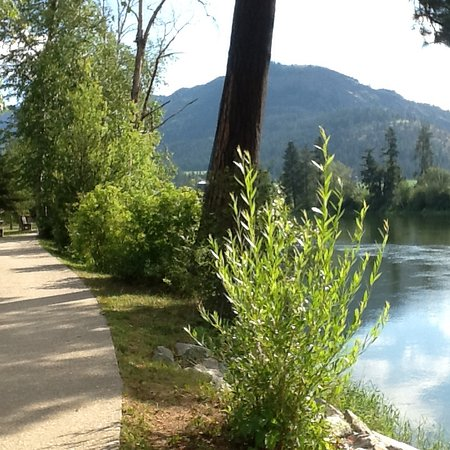 Enderby, Canadá: Walk way in front of our site and the Shuswap river