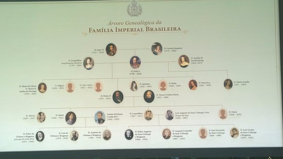 Diagrama Arbol Genealogico Familia Real Picture Of Imperial Museum
