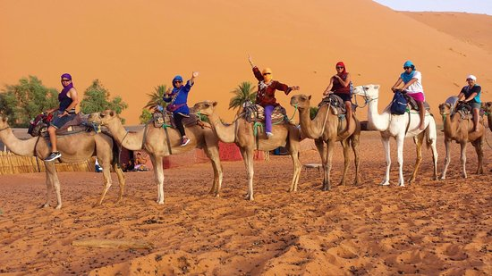 Best of Desert