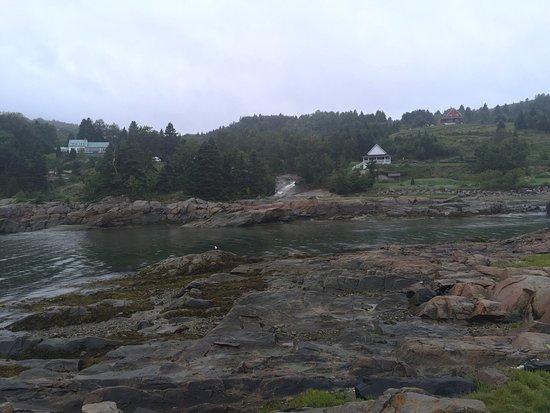 Saguenay, Canada: excellent séjour. France est très accueillante. La chambre est agréablement décorée. Espace, pro