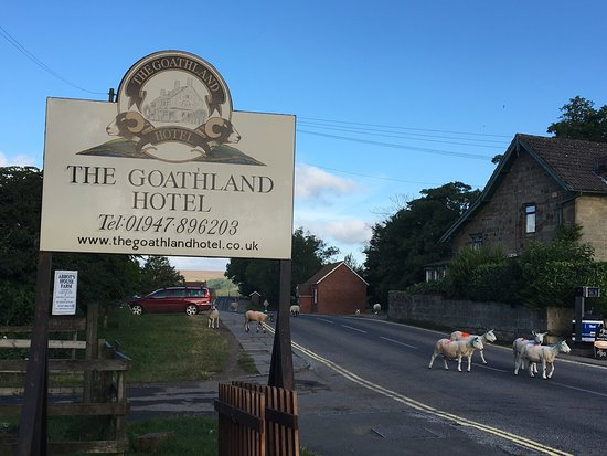 Goathland Hotel Reviews