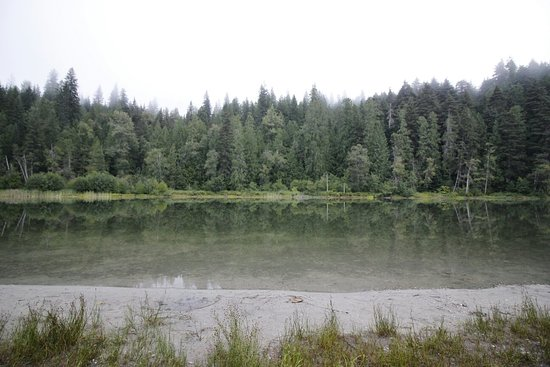 Williamson's Lake Campground: View from camp site