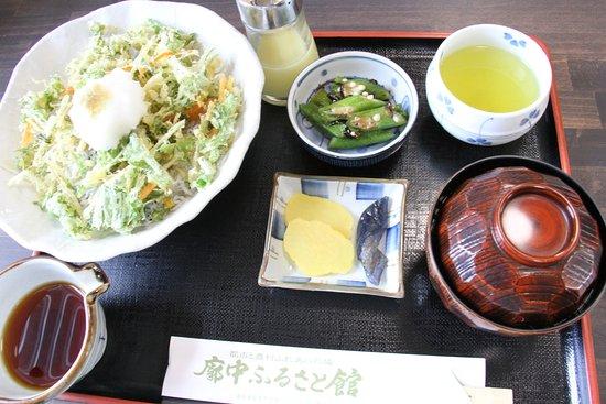 Aki, Japón: 掻き揚げしらす丼。