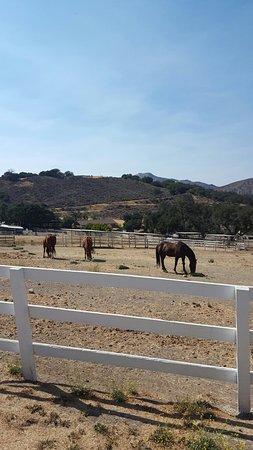 Rancho Oso RV & Camping Resort: 20160809_154542_large.jpg
