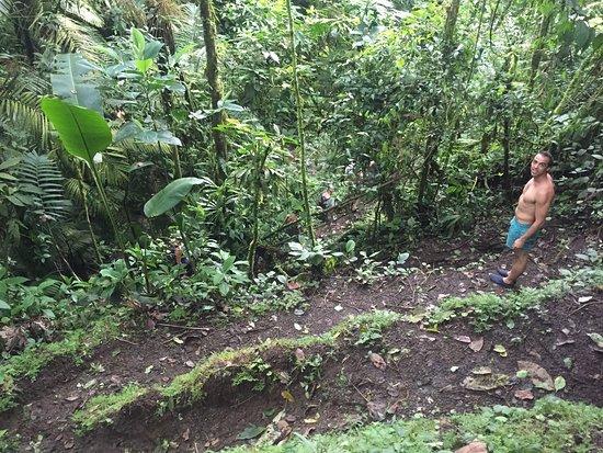 El Castillo, Costa Rica: photo4.jpg