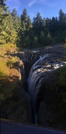 Englishman River Falls Provincial Park : Nice place!  Make sure to walk off the path and check out the river!