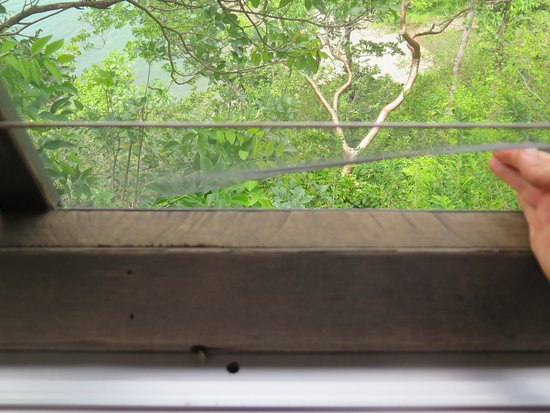 Secret Bay: Another screen not attached to frame in living room of Zabuco I