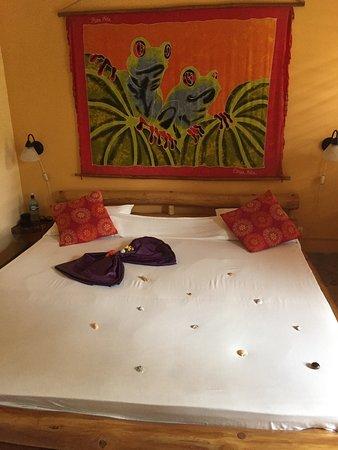 Samara Palm Lodge: photo0.jpg
