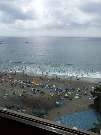 Imaihama Beach: 今井浜海水浴場を望む