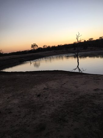 Ulusaba Private Game Reserve, África do Sul: photo2.jpg