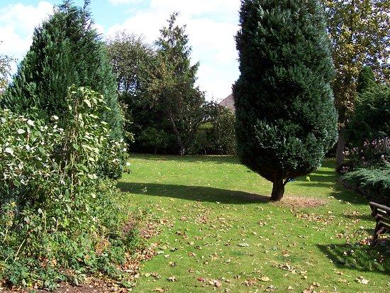 Colerne, UK: Garden