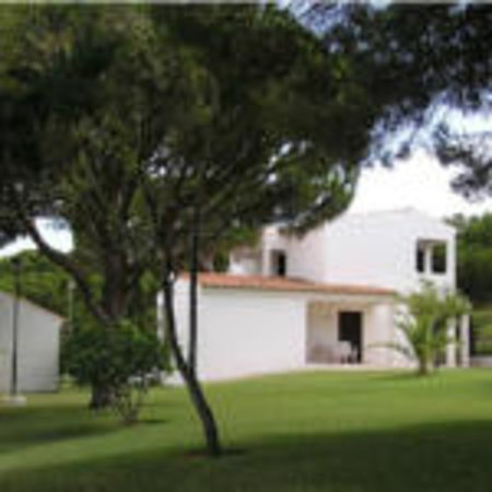 Aldeia da Falesia : Jardim