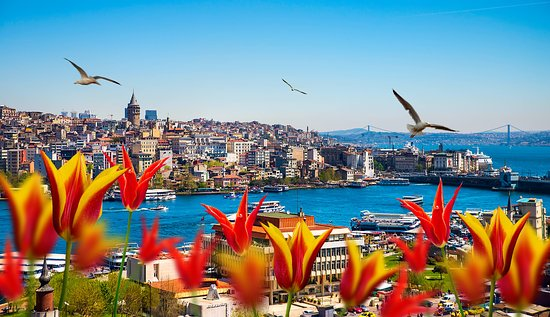 Image result for istanbul things to do