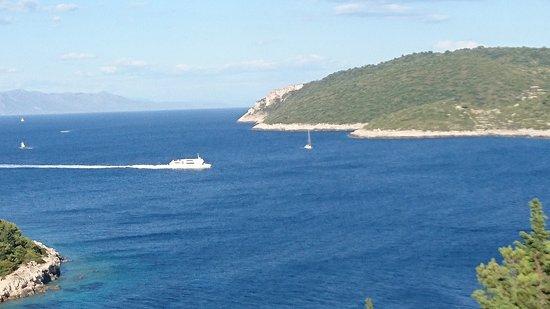 Island of Vis Foto