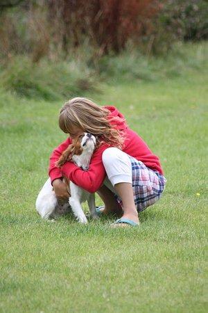 Goonhavern, UK: dog friendly