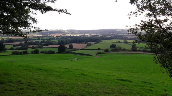 Tenbury Wells, UK: 20160809_191835_large.jpg