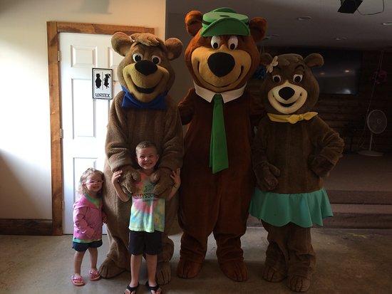 Yogi Bear's Jellystone Park Camp-Resort Luray張圖片