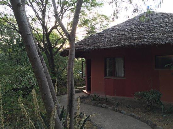 Kia Lodge – Kilimanjaro Airport: photo0.jpg
