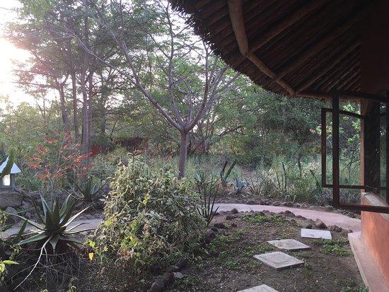 Kia Lodge – Kilimanjaro Airport: photo2.jpg