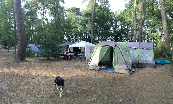 Rille, Frankrig: The Green Tent and white gazebo are on one pitch