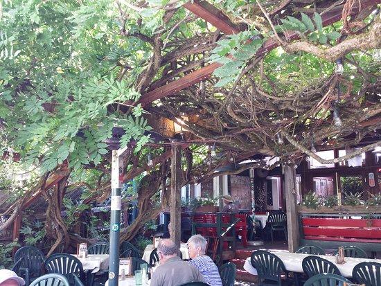 Bella Union Restaurant & Saloon: Bella Union outdoor patio