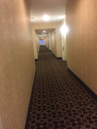 Holiday Inn Express Hotel & Suites Clarksville: photo2.jpg