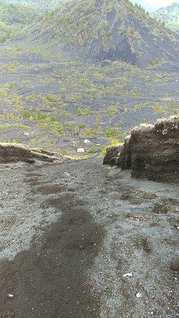 Paricutin Volcano: IMAG0365_large.jpg
