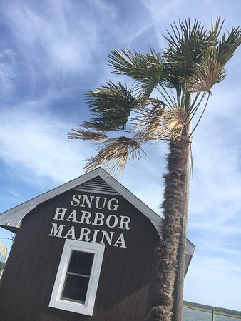 Snug Harbor Marina Boat Rentals: photo0.jpg