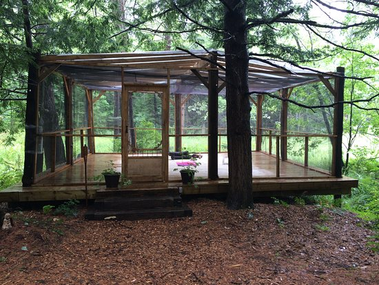 Pura Vida Soul Institute: The Outdoor Studio (in Pouring Rain)