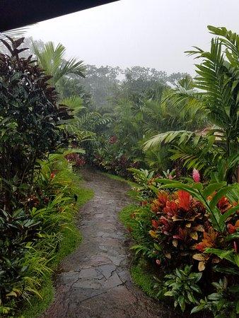 Rio Celeste Hideaway Hotel ภาพ