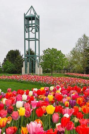 Ames, IA: Campanile Garden spring
