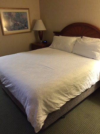 Hilton Garden Inn Portland/Lake Oswego: King Bed. At least it was clean and comfortable.