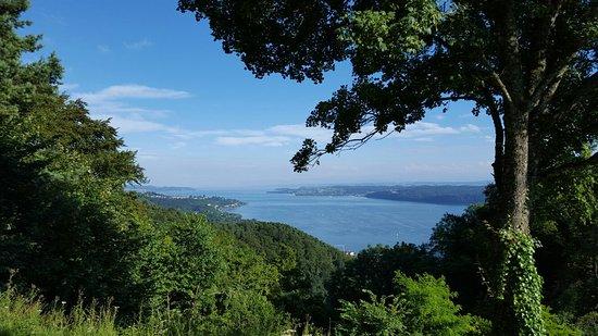 Höhengasthaus Haldenhof: Geniale Aussicht auf den Überlingersee, große Essensauswahl - unsere Essen waren  sehr gut - ich