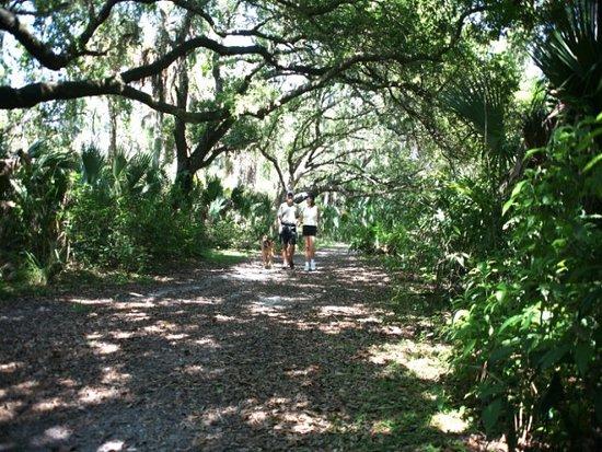Port Saint Lucie, FL: Ron, Debbie and Hutch walking the trails at Oak Hammock Park