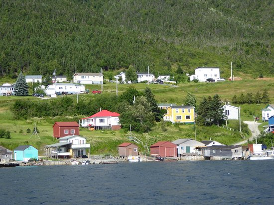 Woody Point, Canada: photo0.jpg