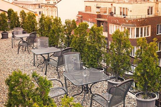 Amarilis: Terrace
