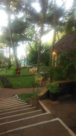 Chowara, Indien: IMG_20160813_063835_large.jpg