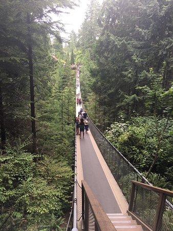 North Vancouver, Canadá: Ponte suspensa